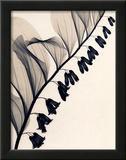 ソロモンの封印 ポスター : ジュディス・マクミラン
