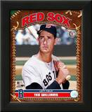 Ted Williams Prints