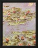 Ninfee Rosse Posters por Claude Monet