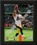 Hines Ward Prints