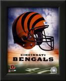Bengals Helmet Logo ('04) Posters