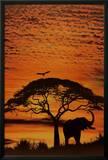 African Skies Photo