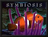 Symbiosis Art