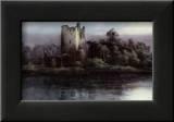 Castle - Kilarney Posters