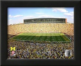 Michigan Stadium University of Michigan Wolverines 2009 Posters