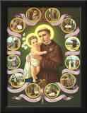 Heilige Antonius von Padua Prints