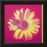 Daisy, c.1982 (Fuschia and Yellow) Art by Andy Warhol