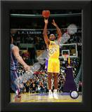 Ron Artest Posters