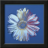 Daisy, c.1982  (blue on blue) Poster by Andy Warhol