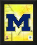 2009 University of Michigan Team Logo Art