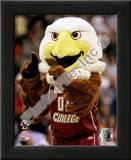 The Boston College Eagles Mascot Prints