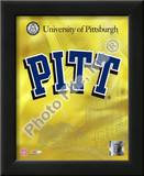 University of Pittsburgh Panthers 2008 Logo Posters