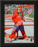 Clemson University Tigers Mascot Prints