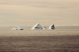 Icebergs in Greenland Photographic Print by Françoise Gaujour