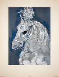 Cheval de Cirque Kunstdrucke von Marcel Vertes