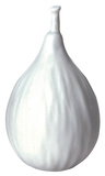 White Porcelain Fig Home Accessories