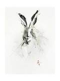 Mr. Rabbit Prints by Alexis Marcou