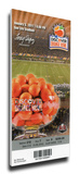 2011 Orange Bowl Mega Ticket - Stanford Cardinals Stretched Canvas Print