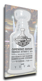 Boston Bruins 2011 Stanley Cup Champions Banner Raising Mega Ticket Stretched Canvas Print