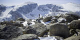 A Male Hiker on Froze to Death Plateau in the Absaroka Beartooth Wilderness, Montana Photographic Print by Steven Gnam