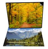 Forest in Autumn, Schoenbuch, Germany & Lake Matheson, Mount Tasman and Mount Cook, New Zealand Set Prints by Jochen Schlenker