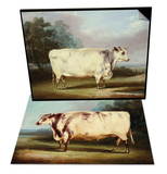 A Prize Cow & A Prize Bull Set Prints by William Henry Davis