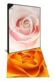 A Pink Rose & Close-Up of Orange Rose Set Prints by Abdul Kadir Audah