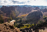 Mountain Goat Stands at the Edge of Bouldery Cliff at the Maroon Bells in Colorado Photographic Print by Kent Harvey