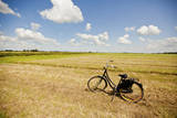 Bike in a Field in the Dutch Countryside North of Amsterdam, Netherlands Photographic Print by Carlo Acenas