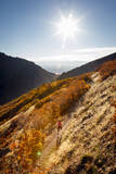 A Young Woman Goes for a Fall Run Along the Pipeline Trail, Millcreek Canyon, Salt Lake City, Utah Photographic Print by Louis Arevalo