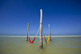 An Empty Red and Yellow Hammock in Holbox Island, Mexico Photographic Print by Karine Aigner
