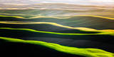 The Green Rolling Hills of the Palouse in Spring Photographic Print by Ben Herndon