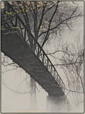 Bridge Reflection Photographic Print by Frances Gallogly