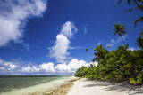 Beautiful Beaches of Alphonse Island, Seychelles Photographic Print by Matt Jones
