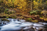Autumn Colors on a Slow Motion River in the Wasatch Mountains of Utah Usa Photographic Print by Mitch Johanson