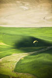 A Male Paraglider Prepares to Land in Palouse in Eastern Washington Photographic Print by Ben Herndon