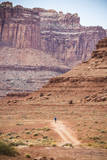 Male Endurance Cyclist Rides Mountain Bike on White Rim Trail in Canyonlands National Park, Utah Photographic Print by Matt Jones