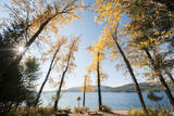 Les Mason State Park Along Whitefish Lake, Montana Photographic Print by Steven Gnam