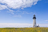 Summer Wildflowers and Blue Sky Frame an Oregon Lighthouse, Lincoln County, Newport, Oregon Photographic Print by Patricia Davidson