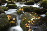 Smoky Mountain National Park, Tennessee: a Small Stream Flowing in Roaring Forks Photographic Print by Brad Beck
