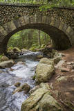 Water and Path under Cobblestone Bridge, Acadia National Park, Mount Desert Island, Maine Photographic Print by Sue Anne Hodges