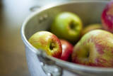 Apples in a Pail in Oregon Photographic Print by Justin Bailie