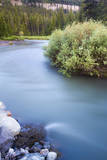 Soda Butte Creek Rushes Through Silvergate, Montana Photographic Print by Mike Cavaroc