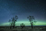 Northern Lights over the High Plains of Montana Photographic Print by Steven Gnam