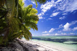 Beautiful Beach of Alphonse Island, Seychelles Photographic Print by Matt Jones