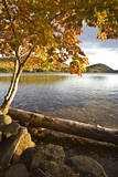 Eagle Lake, Acadia National Park in Autumn, Mount Desert Island, Maine Photographic Print by Sue Anne Hodges