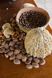 Belize, Punta Gorda, Agouti Farm. Coco Beans, Allspice and Ginger Fotografie-Druck von Cindy Miller Hopkins