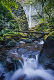 Elowah Falls in the Columbia River Gorge Area, Oregon, USA Photographic Print by Brian Jannsen