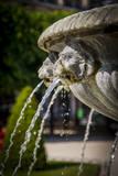Fountain with Lion Heads, Place Des Vosges, Les Marais, Paris, France Photographic Print by Brian Jannsen