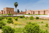 El Badi Palace, Marrakech, Morocco Photographic Print by Nico Tondini